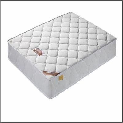 Bose Orthopedic Mattress